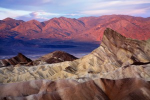 Death Valley, Joshua Tree, Palm Springs, & Las Vegas